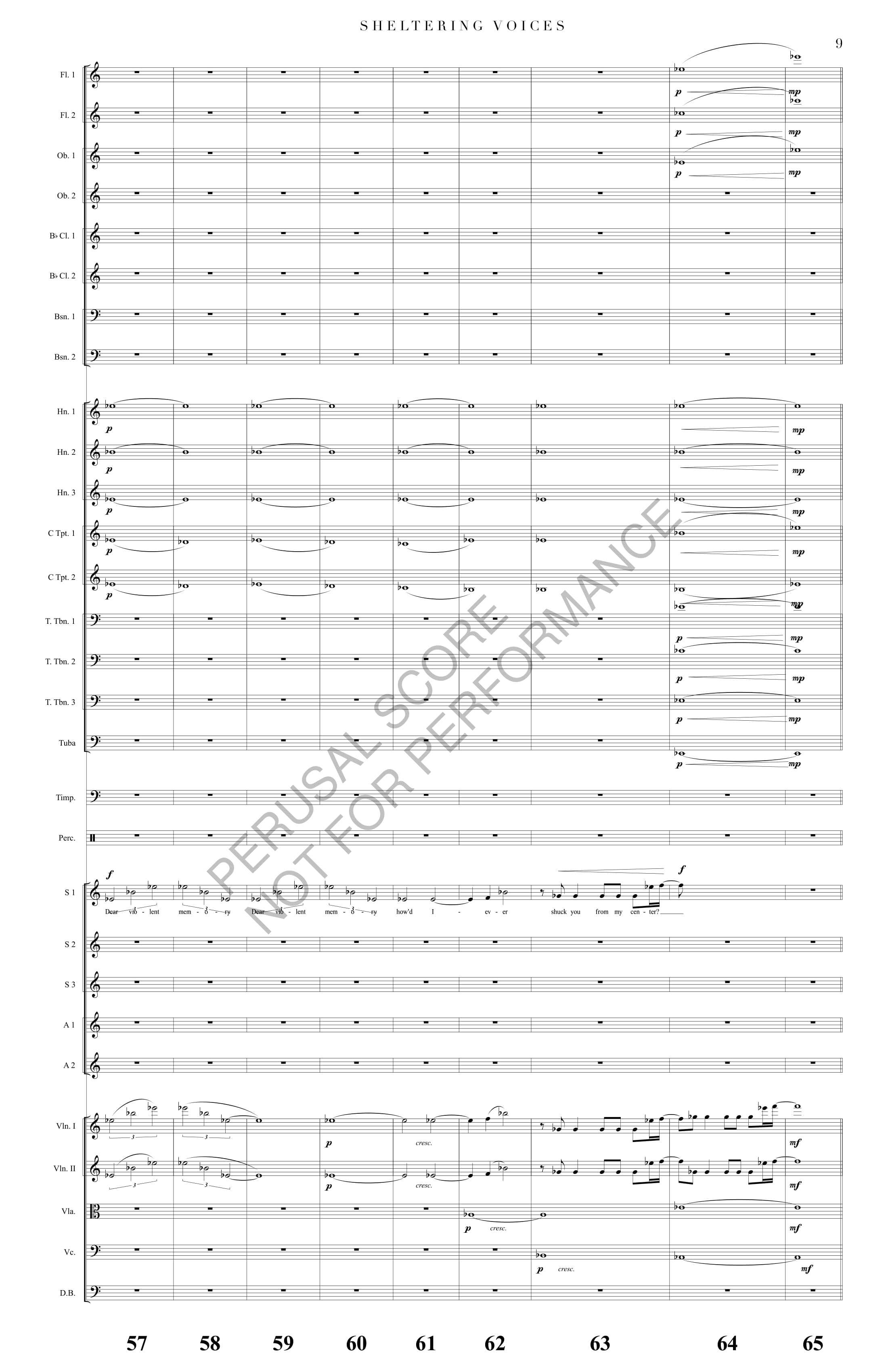 Boyd Sheltering Voices Score-watermark-17.jpg