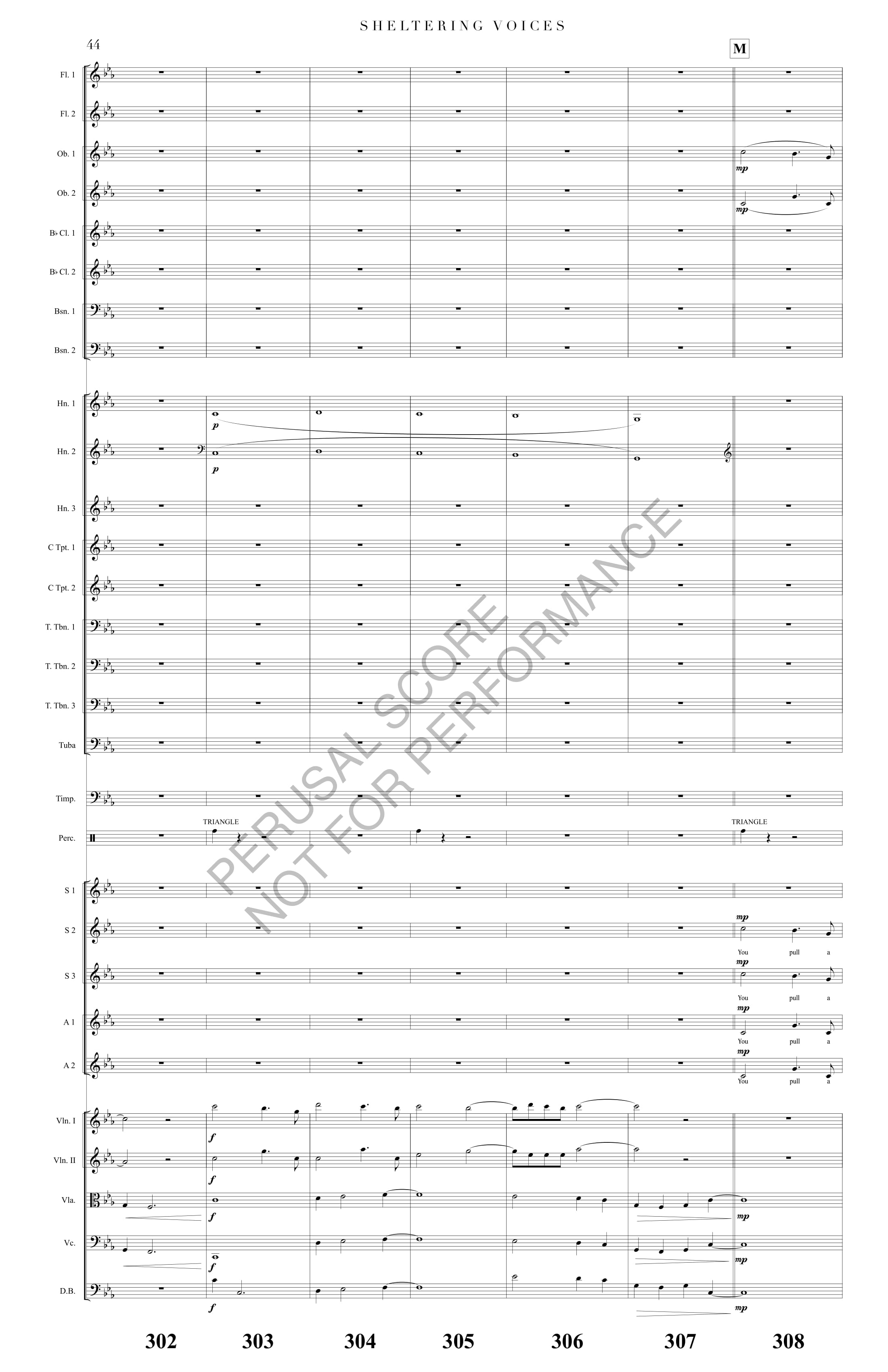 Boyd Sheltering Voices Score-watermark-52.jpg