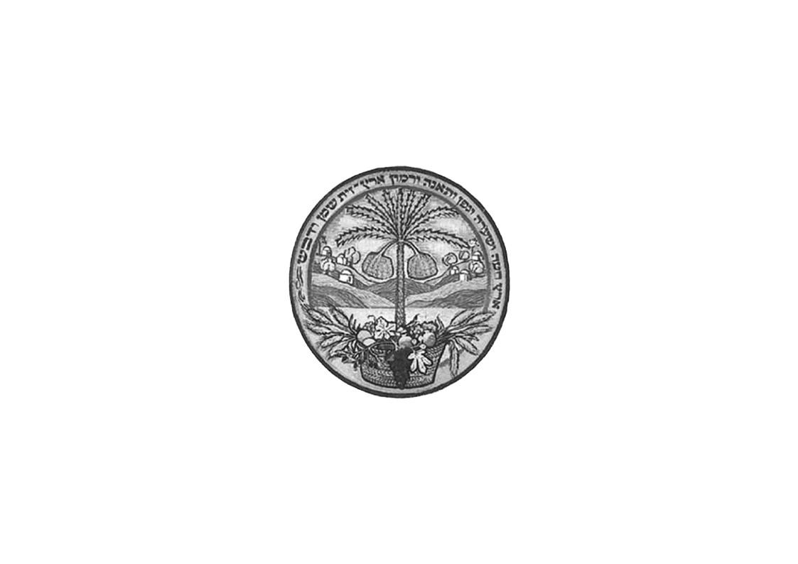 לוגו אפור מכון וולקני.jpg