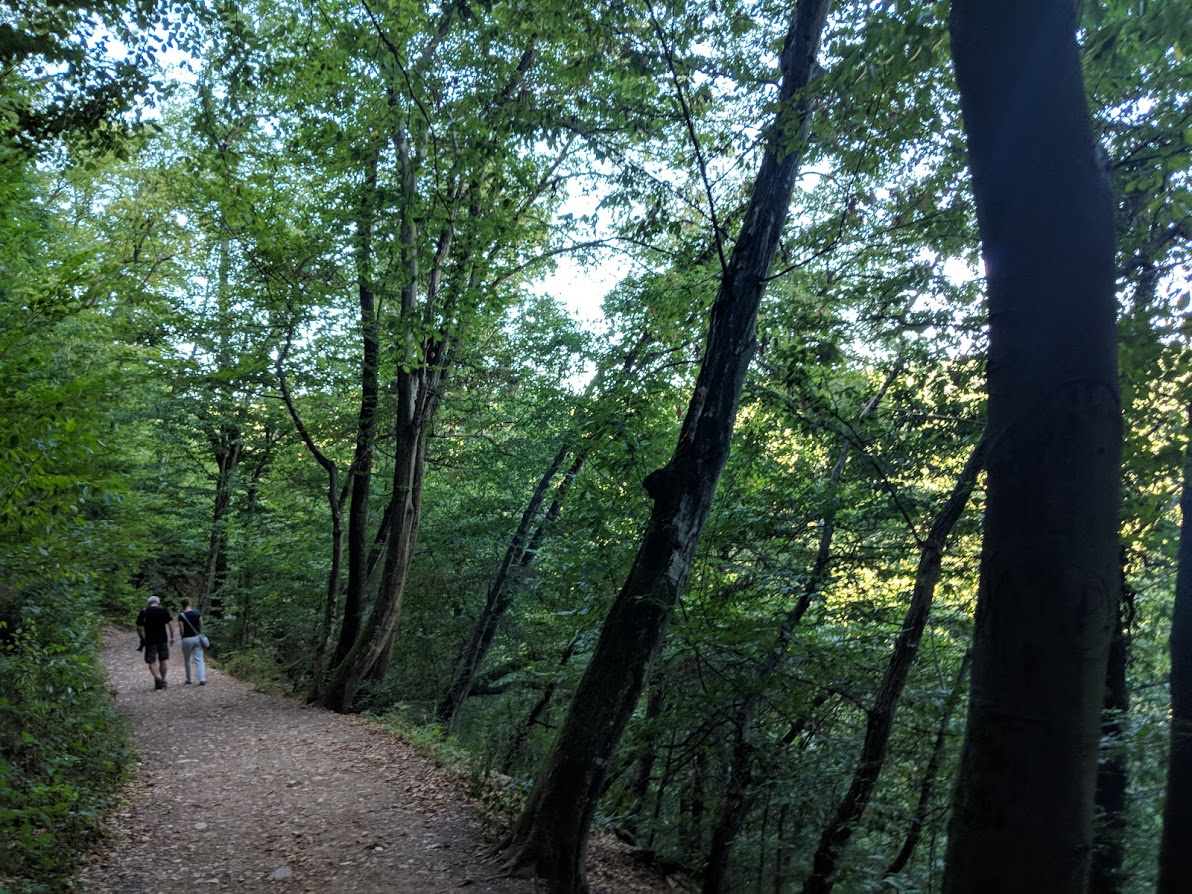 The footpath from the parking lot to Burg Eltz