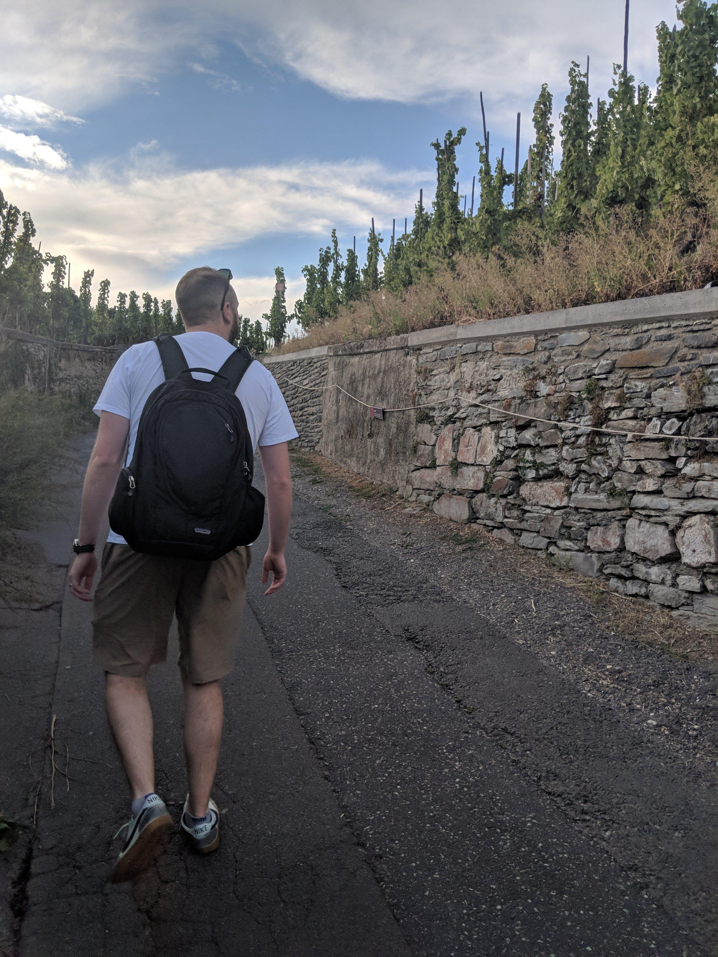 Taking a walk through the Bernkastel vineyards