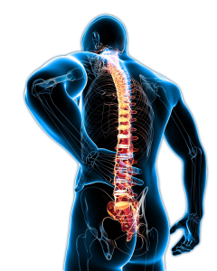 Back_Pain-240x300.png