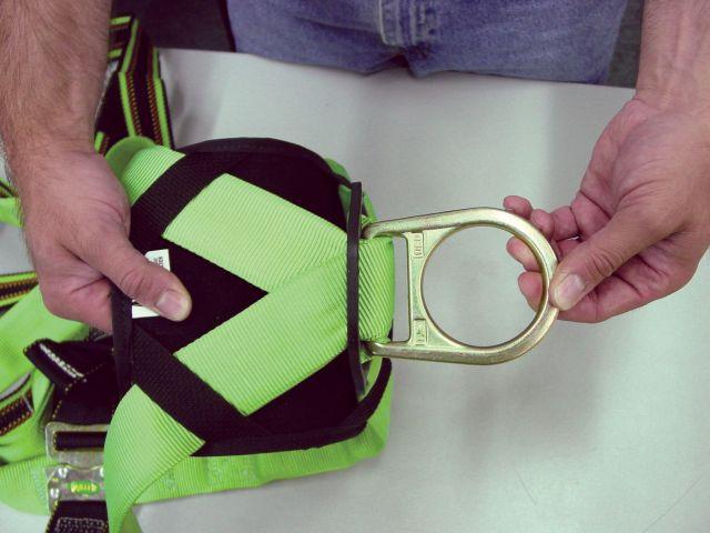 EDD Harness wear1.jpg