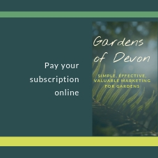 Subscribe - pay your annual fee -