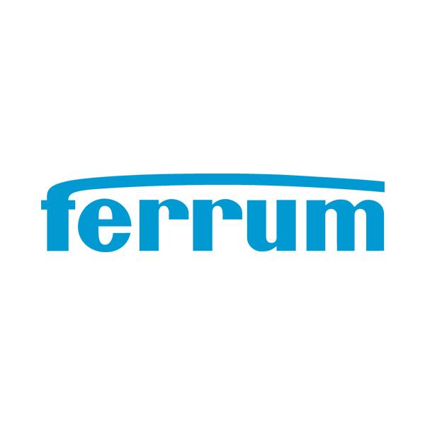 Ferrum_AG_Logo.png