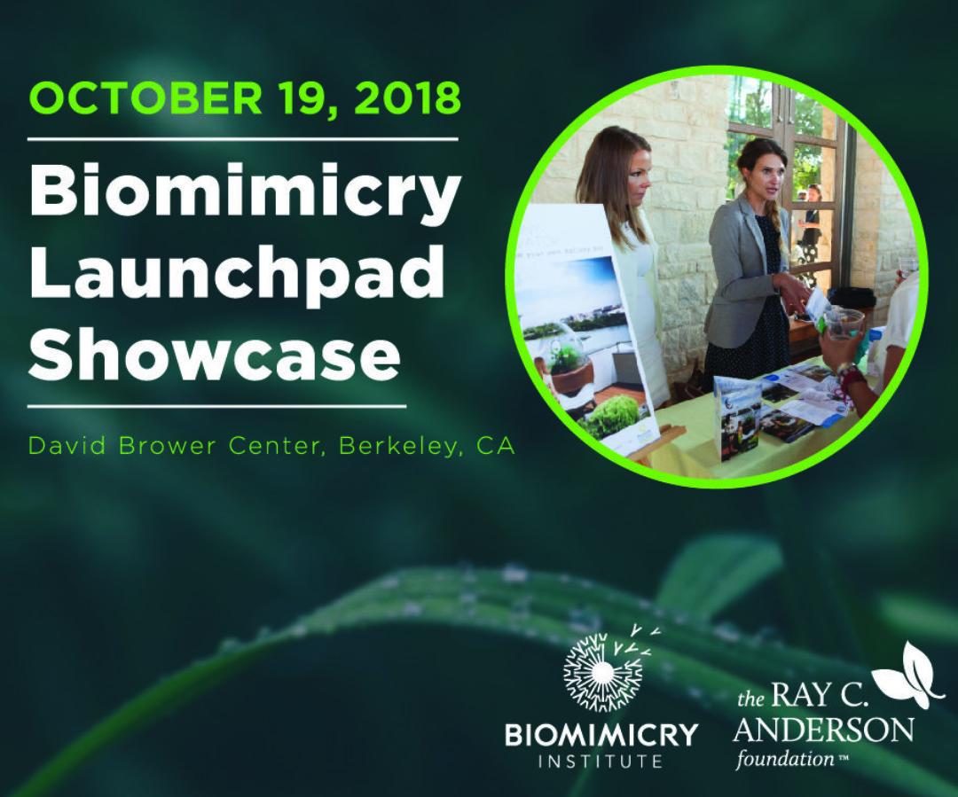Biomimicry Launchpad Showcase     Berkeley, CA - Oct 19, 2018