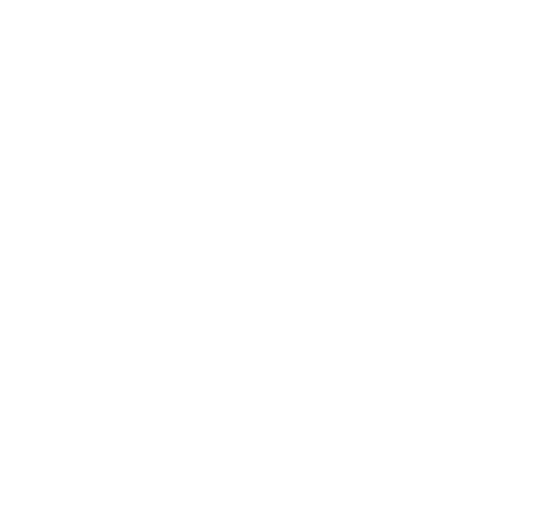 falconviewicon.png