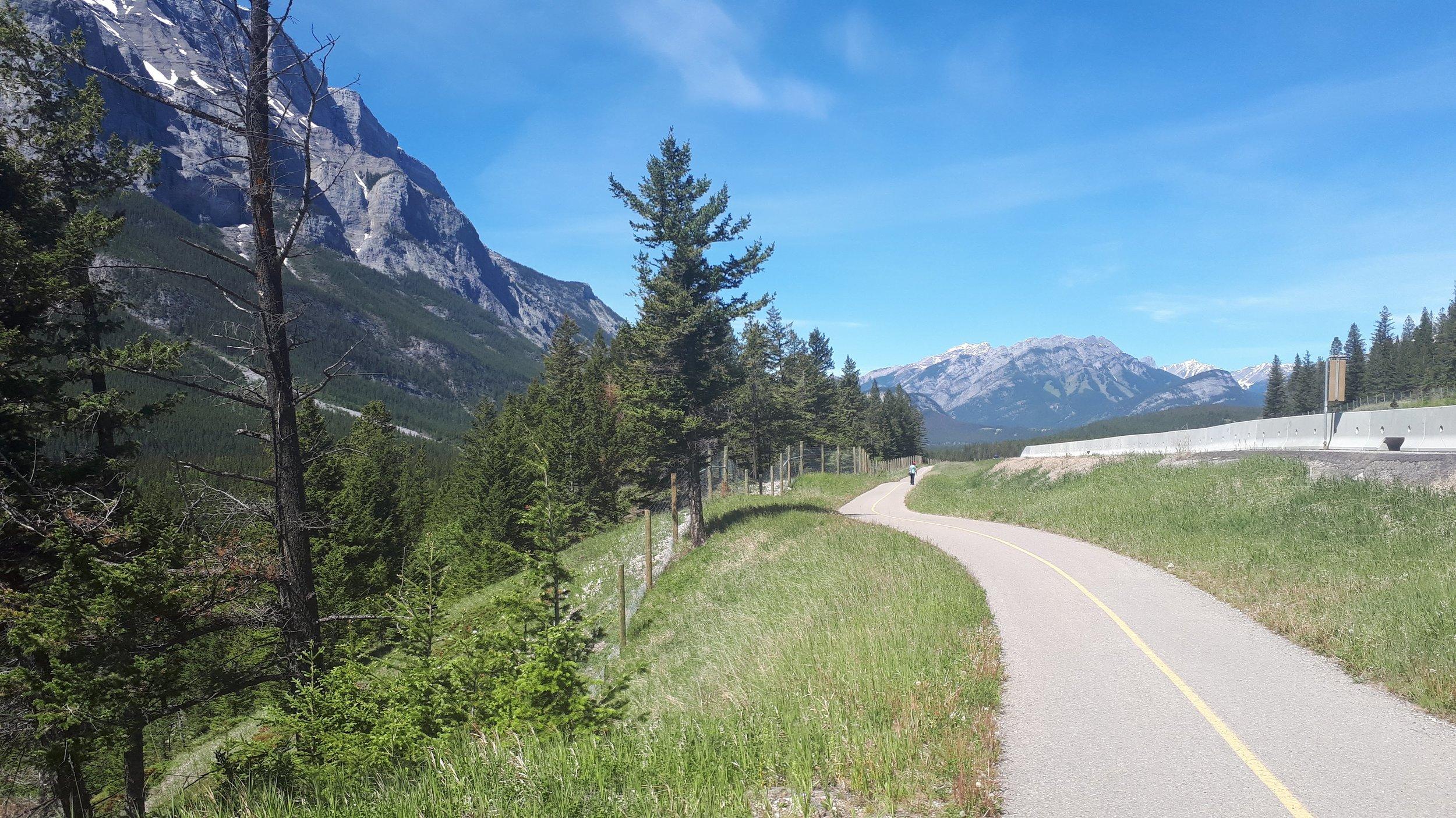 Legacy Trail riding towards Banff.
