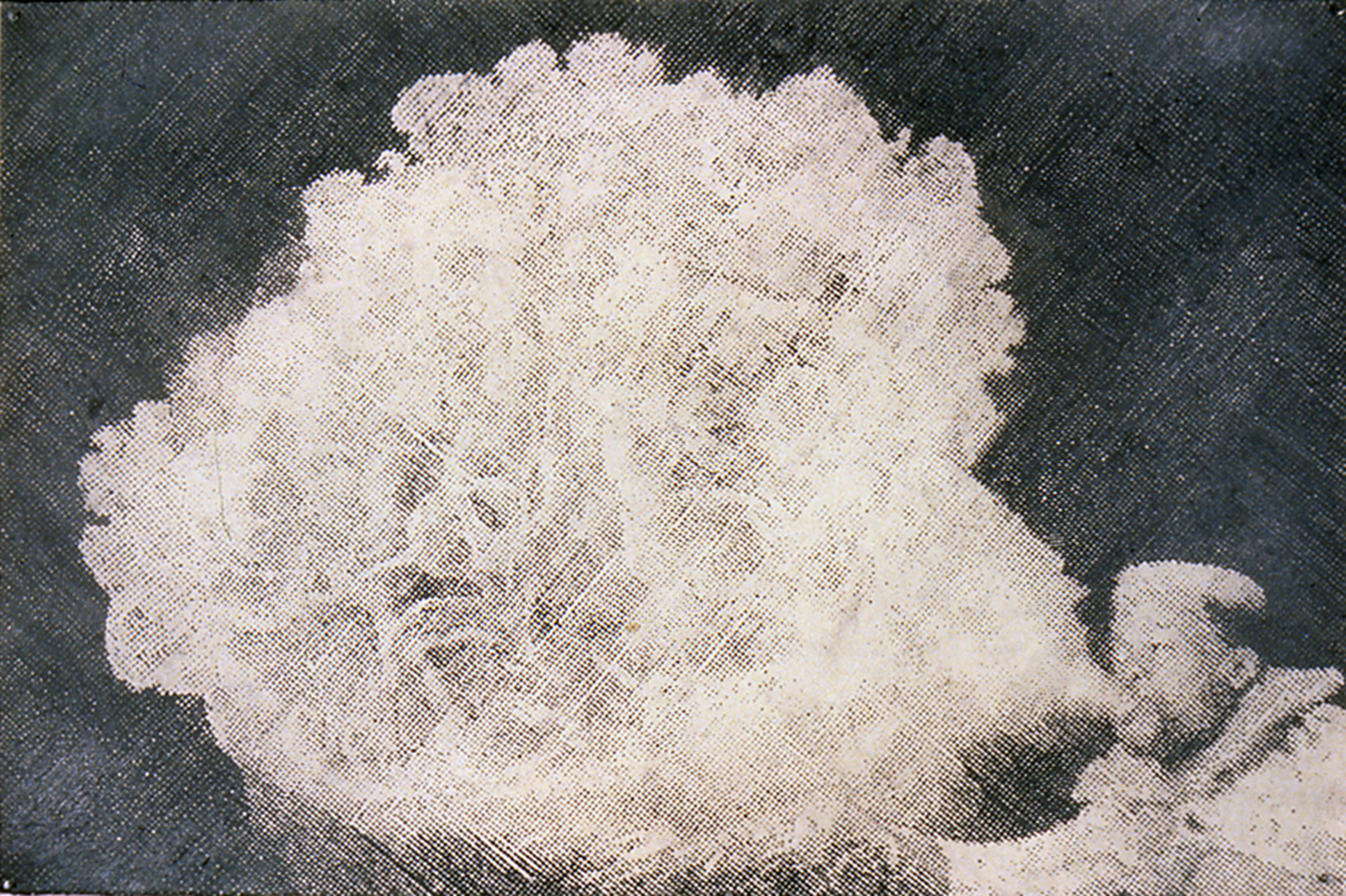 Joe the Human Volcano, 1998, Graphite on Paper, 40 x 60 inches, Private Collection