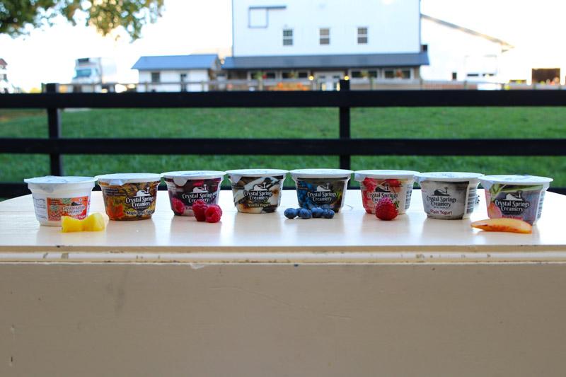 Crystal-Springs-Yogurt.jpg