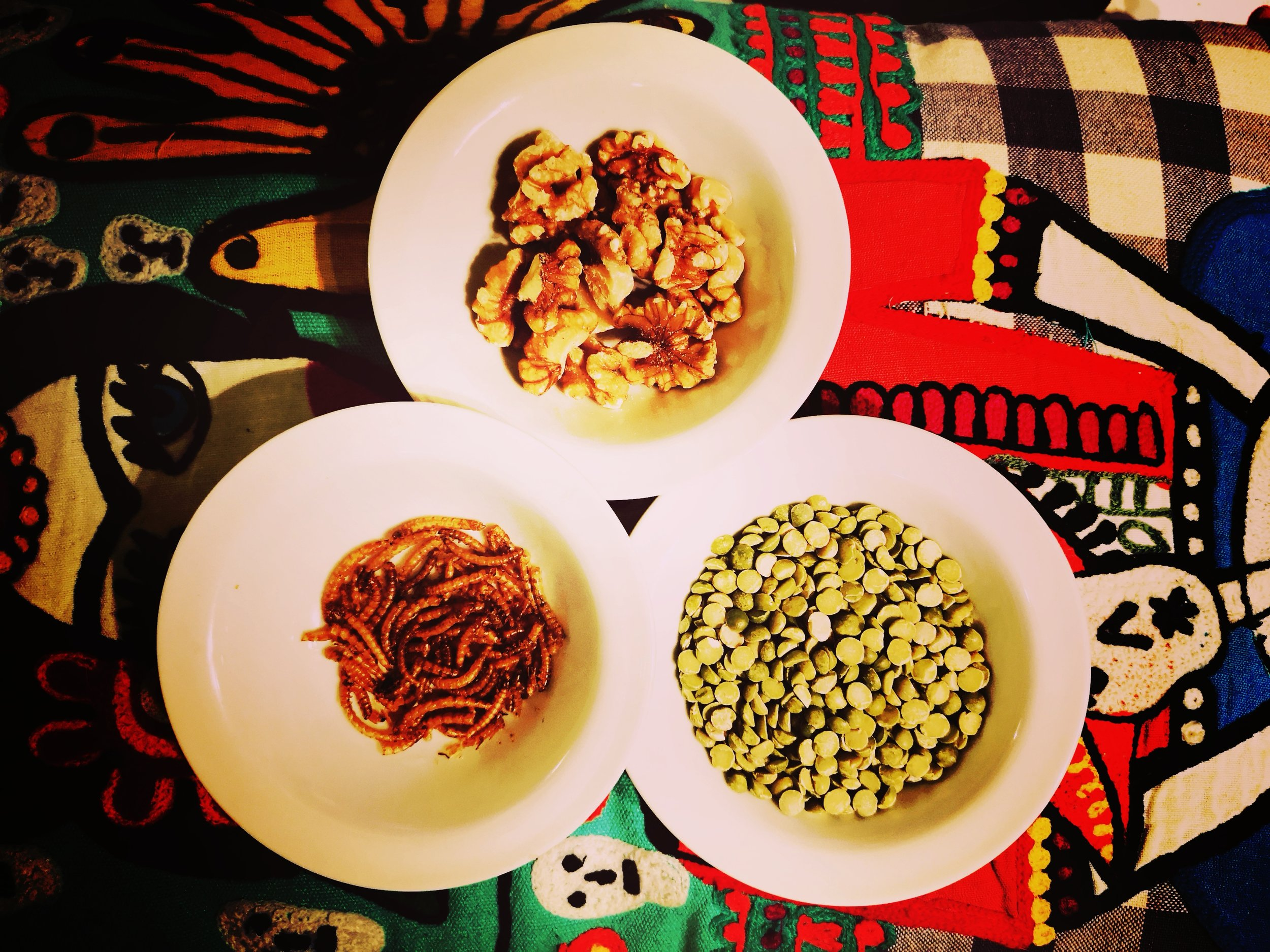 Three alternative protein sources. Nuts, legumes and larvae.