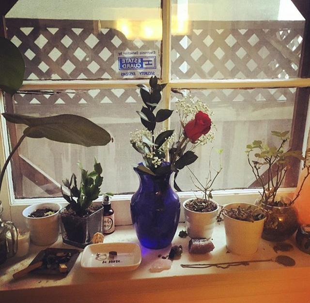 The flowers on my desk? I bought 'em.