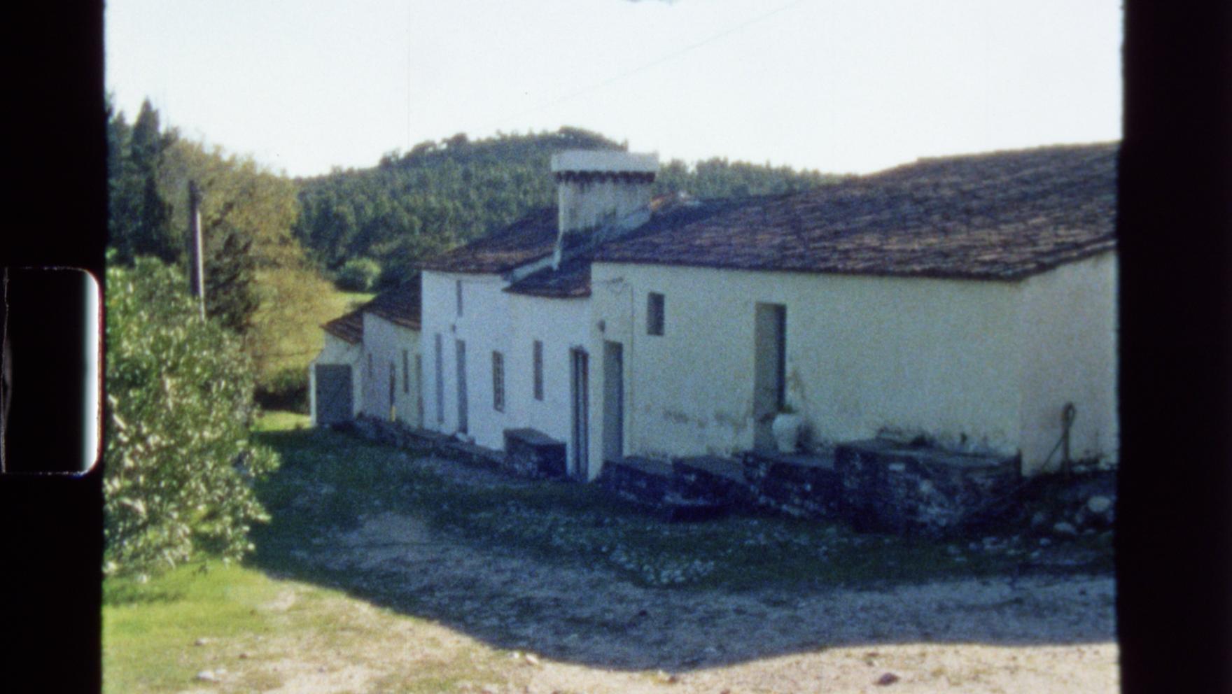 Centa, Tapada da Tojeira, Vila Velha de Rodão, Portugal.