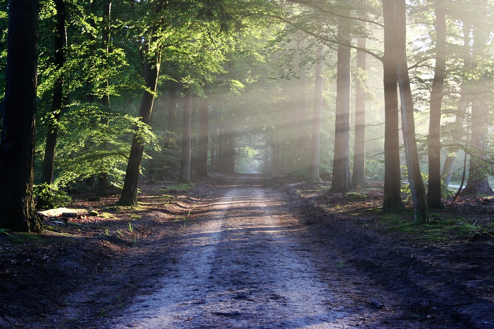 Our way maker - John 6:1-21