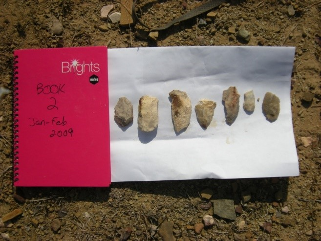 Neolithic stone tools excavated from the Middle Son Valley, Madhya Pradesh, India, 2009. Photo credit: Christina Neudorf.