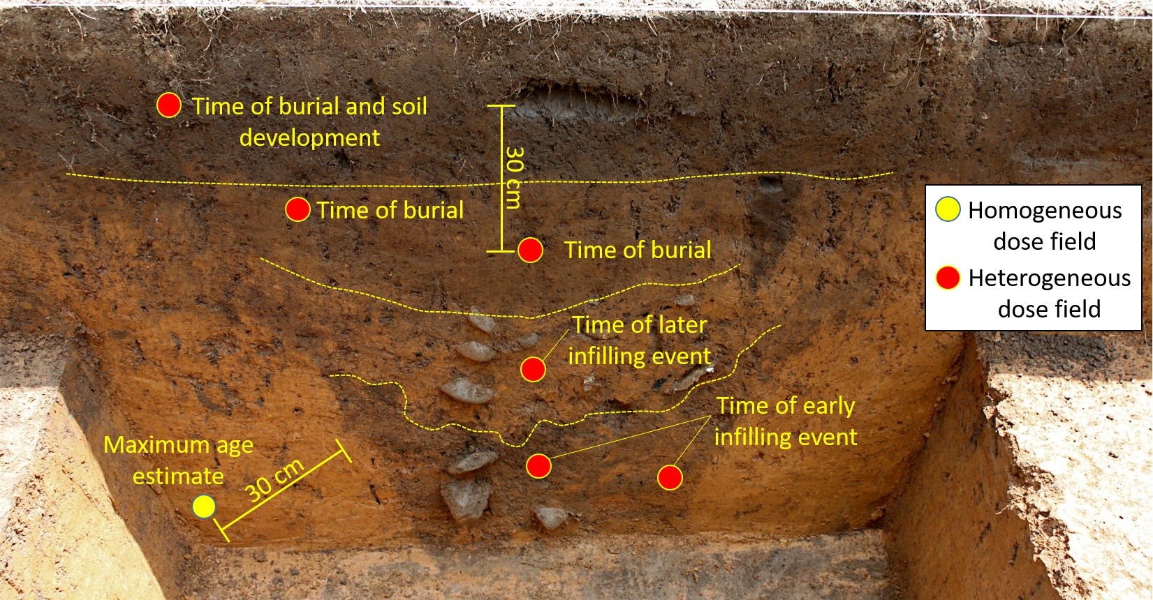 "Possible sample sites (circles) for luminescence dating an earthwork ditch exposed in an archaeological trench at Garden Creek (Wright, 2011, ""Earthwork Update""  https://gardencreekarchaeology.wordpress.com/page/3/ ). The yellow circle shows a sample site where the gamma dose rate field is likely to be homogeneous. All other sample sites (red) are located in heterogeneous gamma dose rate fields. The 30 cm scale is hypothetical, and may not be accurate."