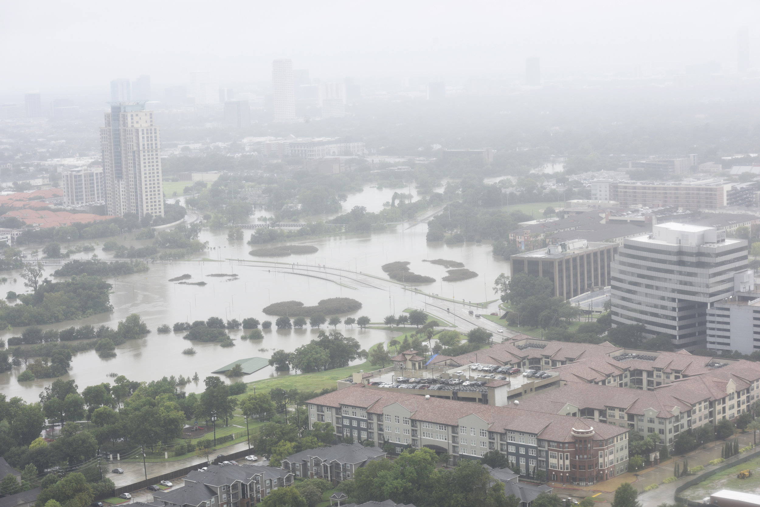 harvey-houston-shutterstock_704713648.jpg