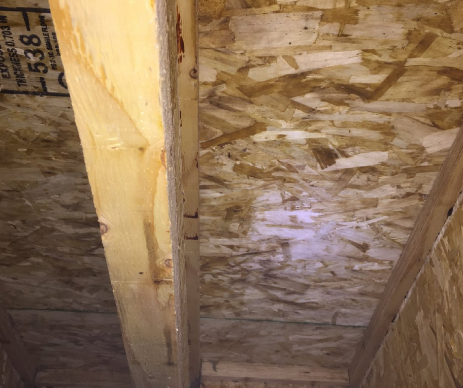 after mold remediation crawl space