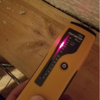 moisture meter found water leak