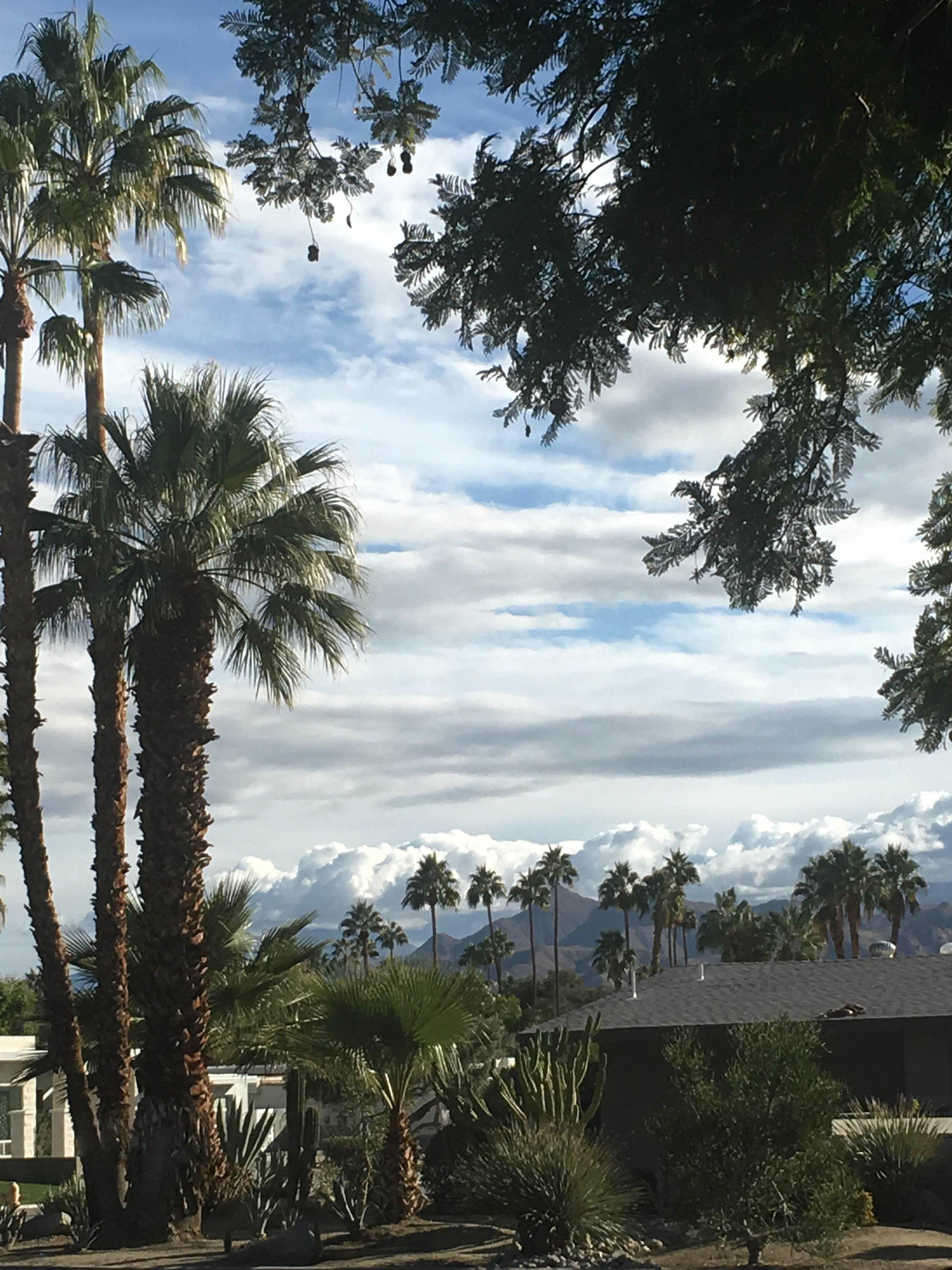 Desert Christmas in Palm Springs