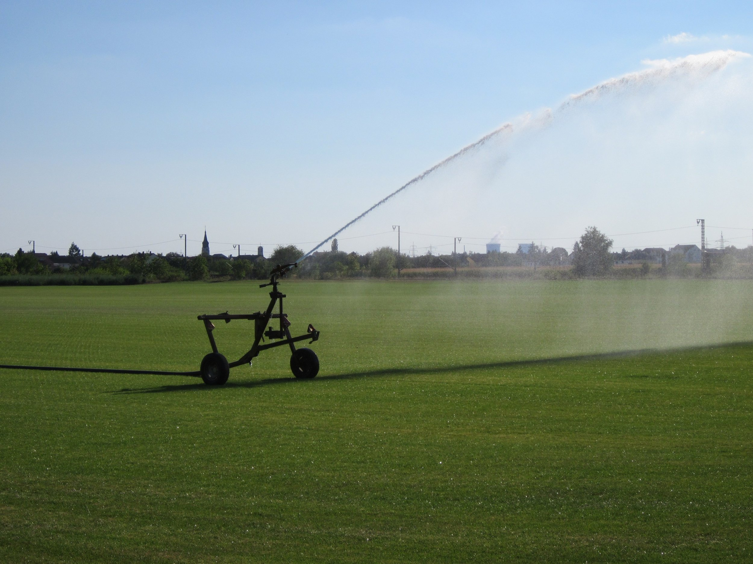 Quality sod comes from sod farms, which provide top quality grasses.