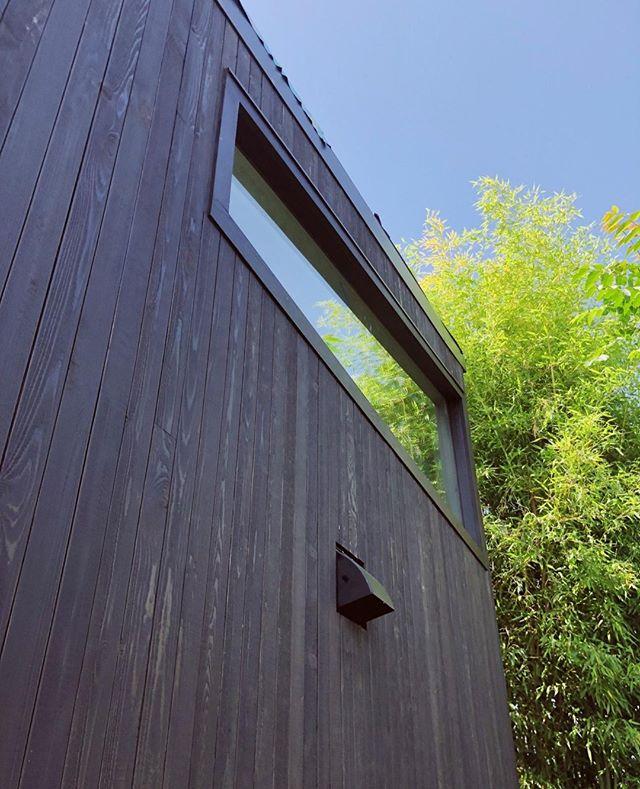 Reflections in the north eye of the building  Shed ADU  -- #windows #minimalist #carpentry #glazing #customwindows #portland #modern #adu #design #build #tinyhouse #livelarge #cedar #pacificnorthwest #architecture #contemporaryarchitecture #architecturephotography #constructionphotography #woodframing #designbuild #custombuilder #minimalism #simplicity #pdx #pdxnow #pdxdesign  #greenarchitecture #greendesign #portlandarchitecture #dadu