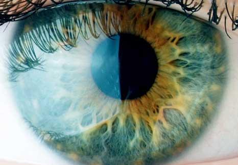 Eyes-to-See.jpg