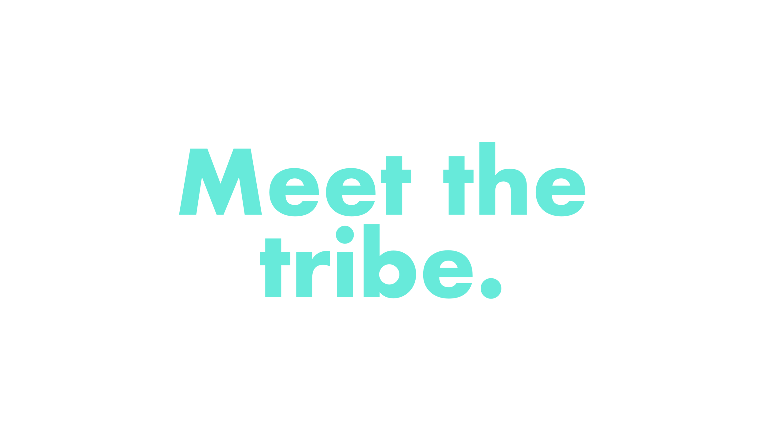 meet_the_tribe.png