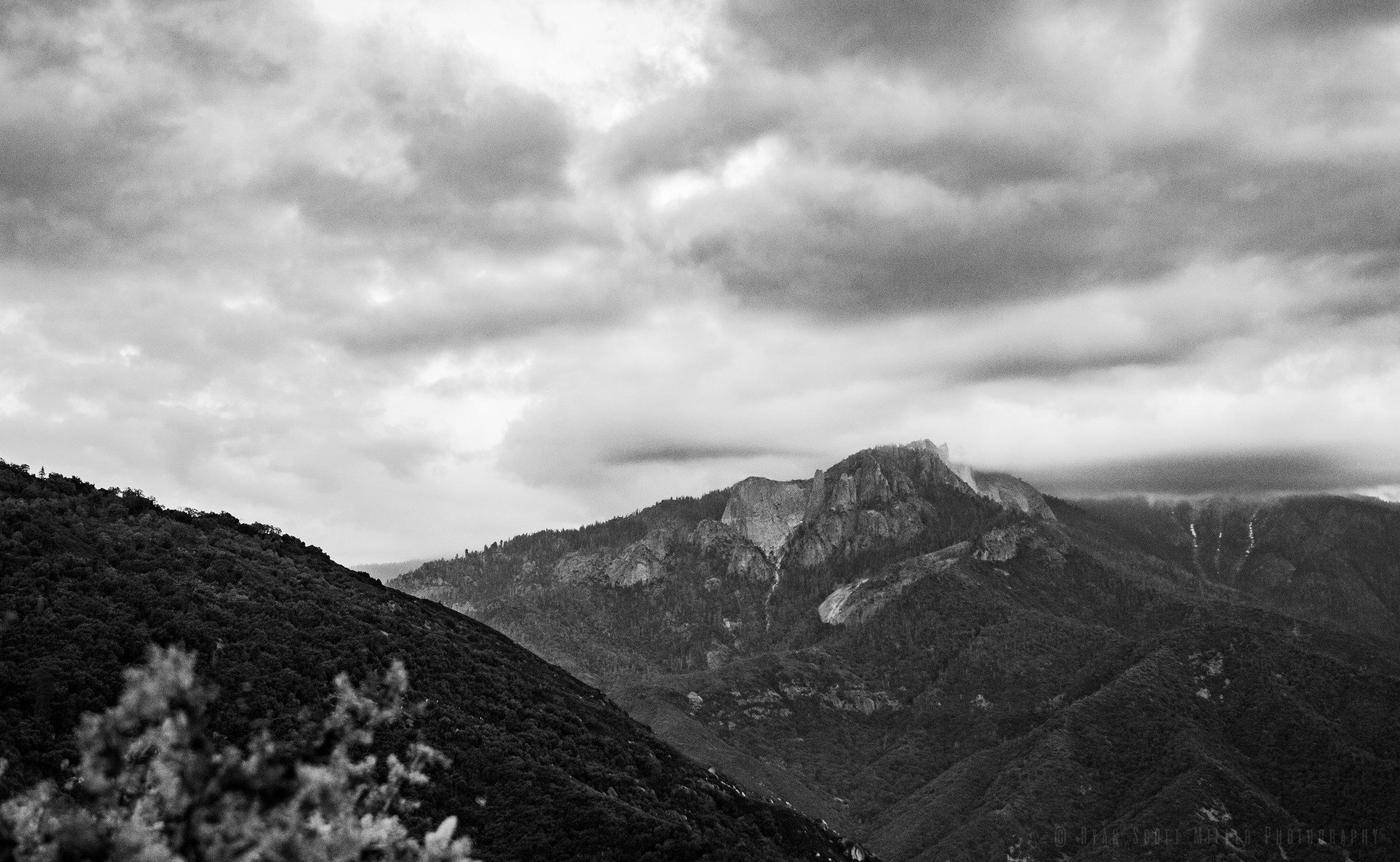 2018-05-19 Sequoia-10.jpg