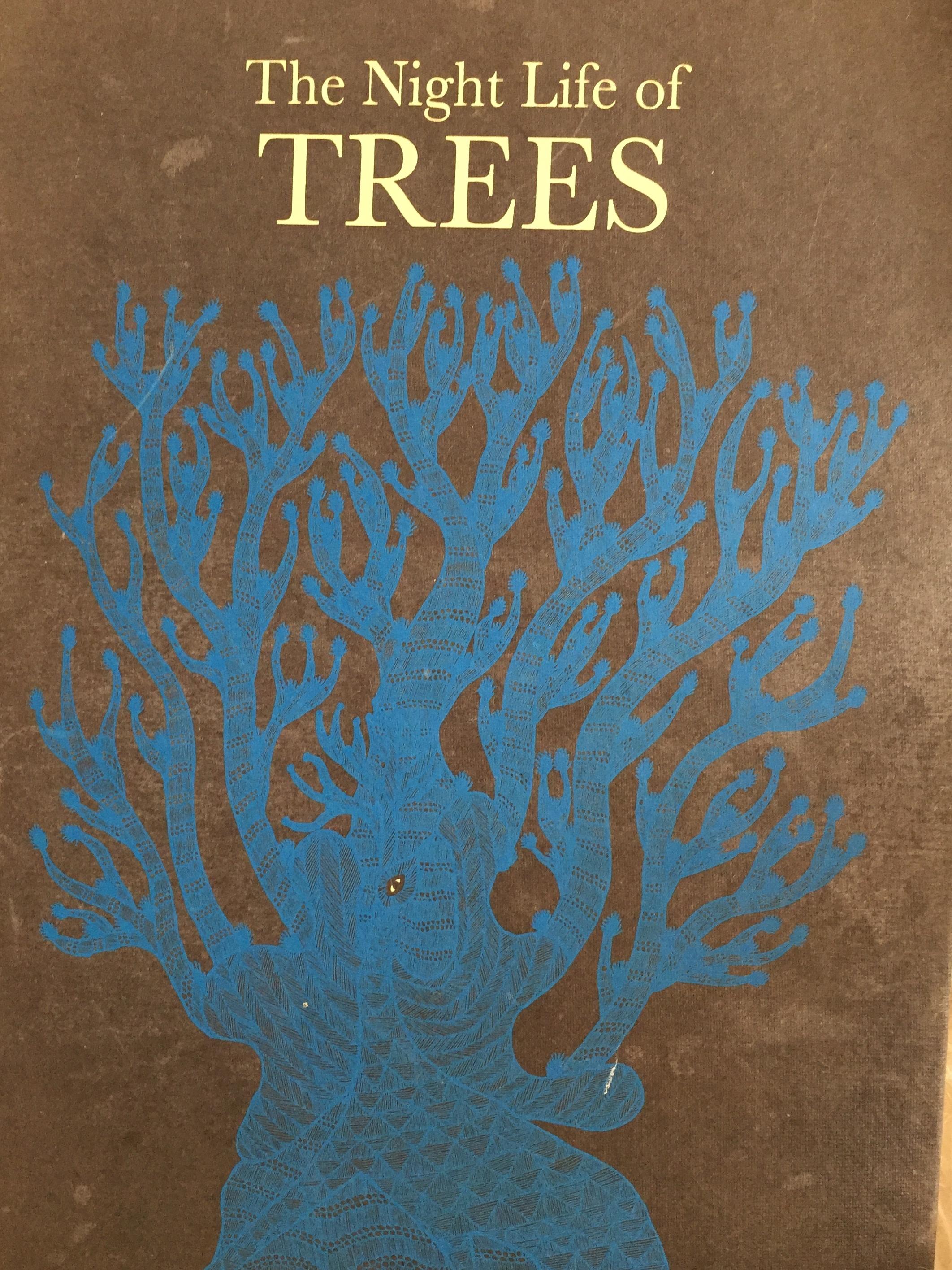 night life of trees.JPG