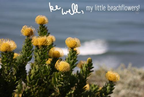 beachflower.png