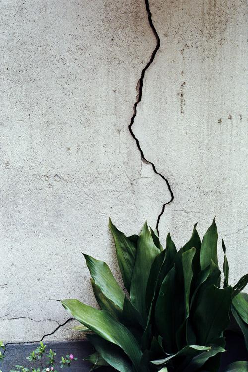 split-wall.jpg