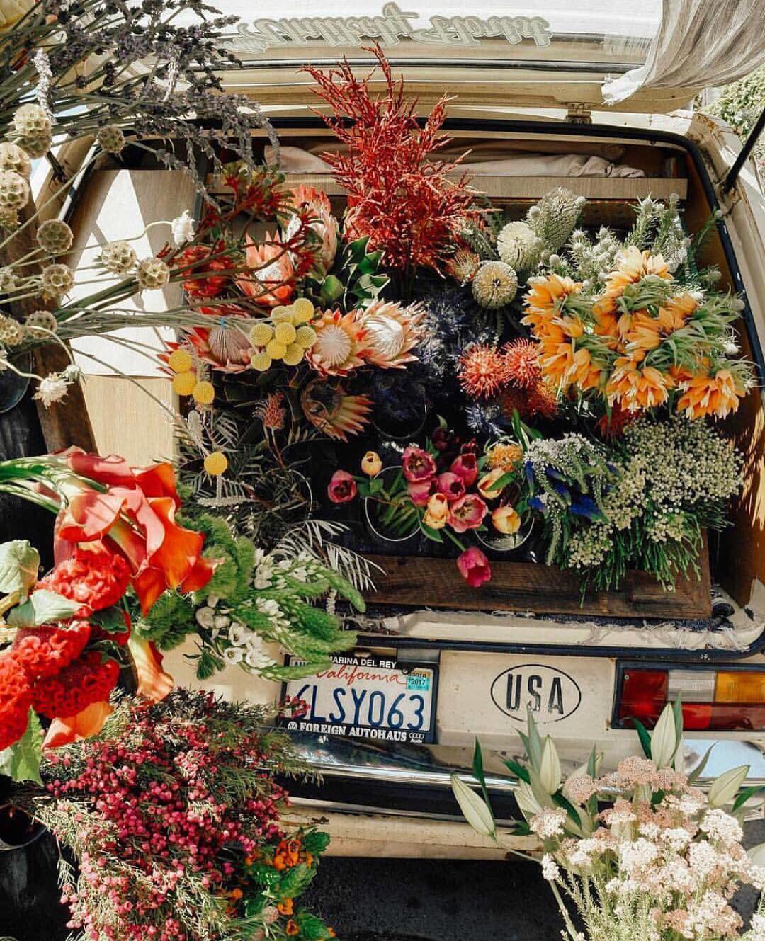 trunk-full-of-flowers.jpg
