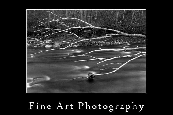 Salmon-Creek-Portfolio.jpg