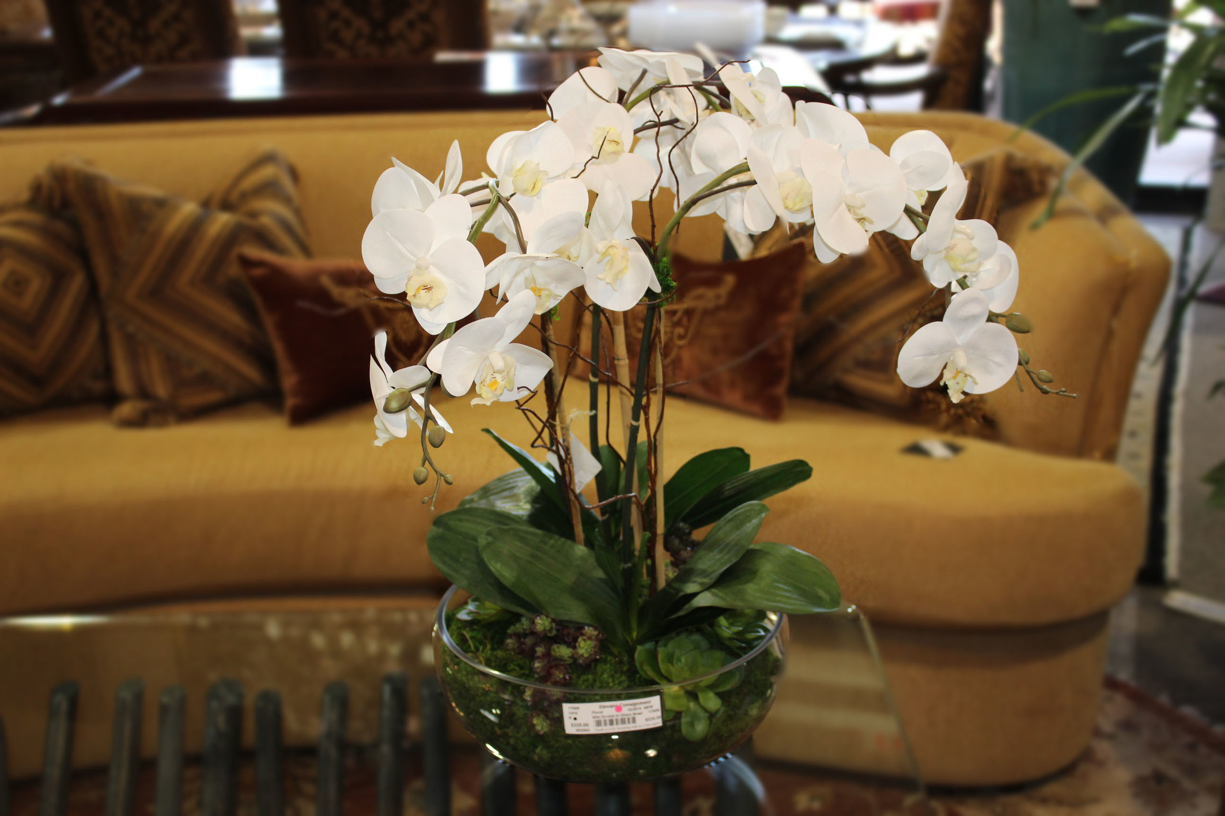 NEW White Orchid in Glass Bowl
