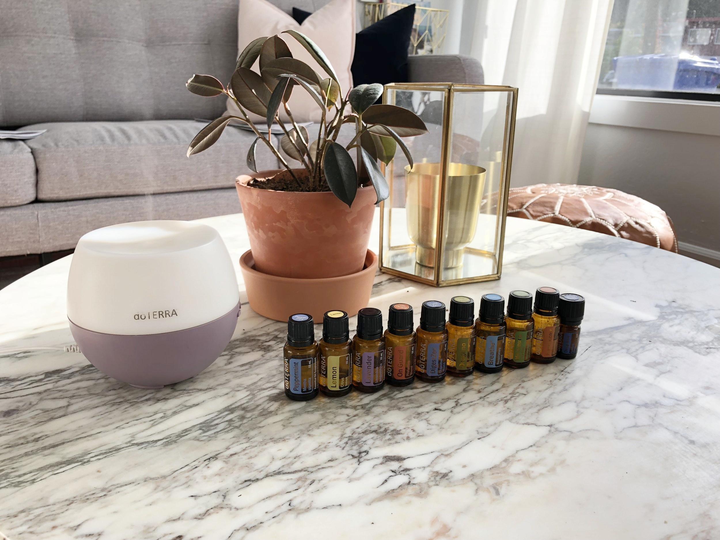 Home Essentials LUNA photo.JPG
