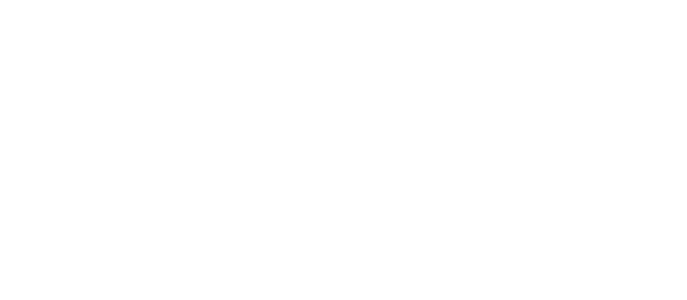 2019_Scale Tech Conference_Logo_White_PNG.png