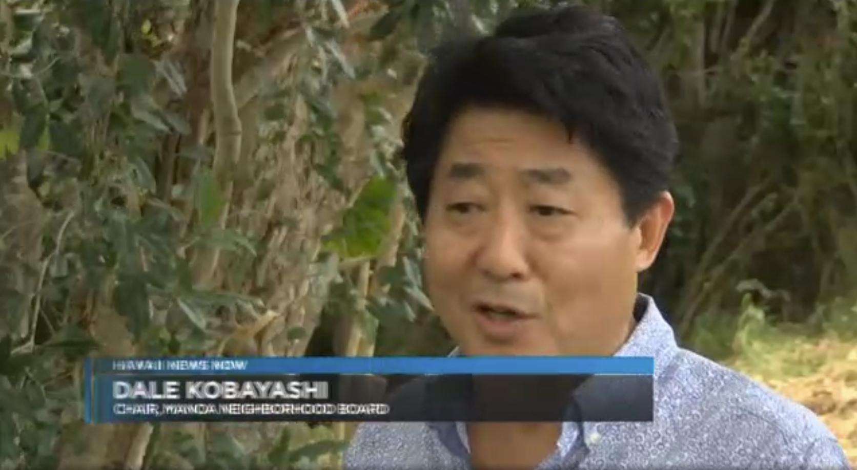 Dale Kobayashi fights to preserve Manoa's iconic trees.