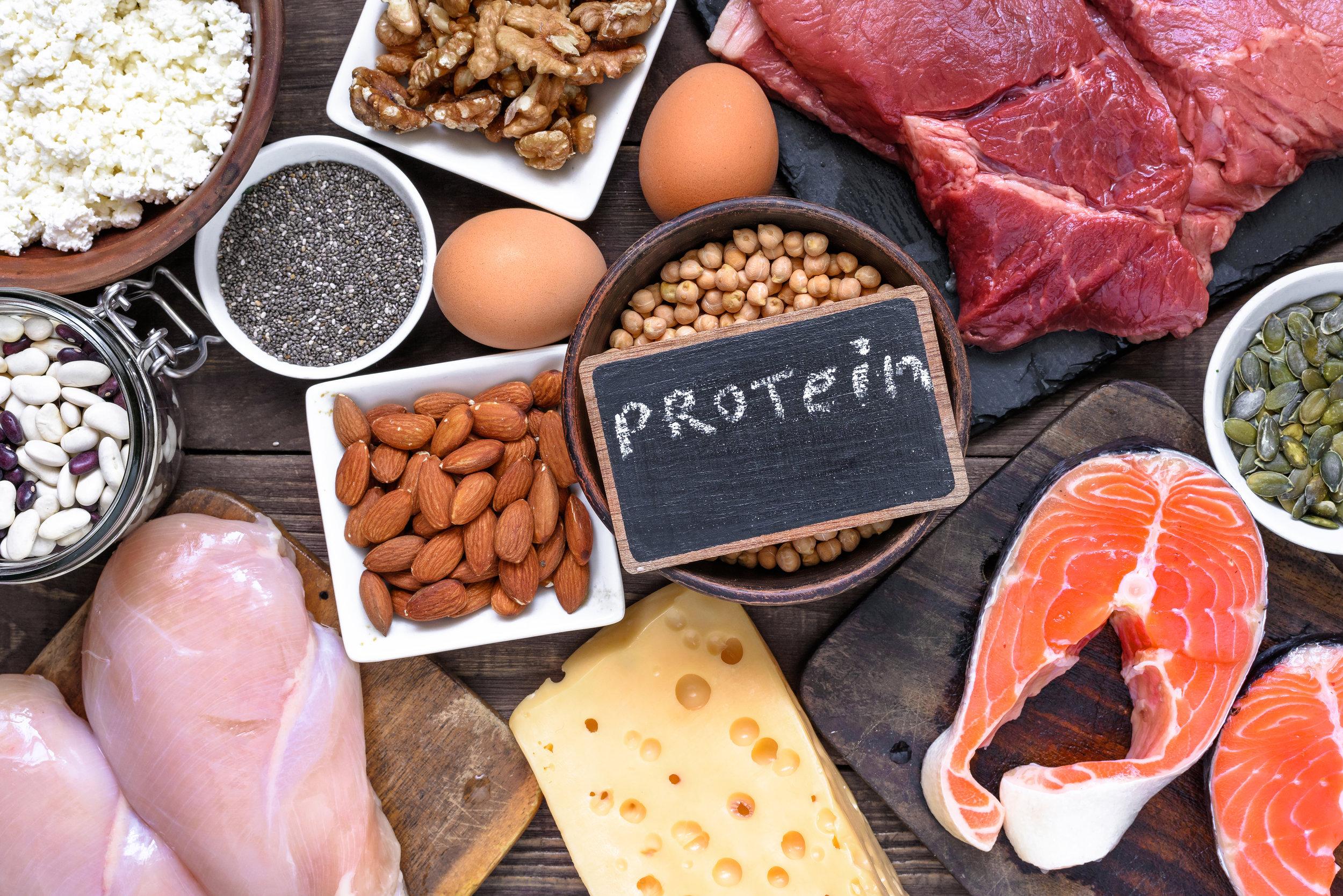 AdobeStock_protein.jpeg