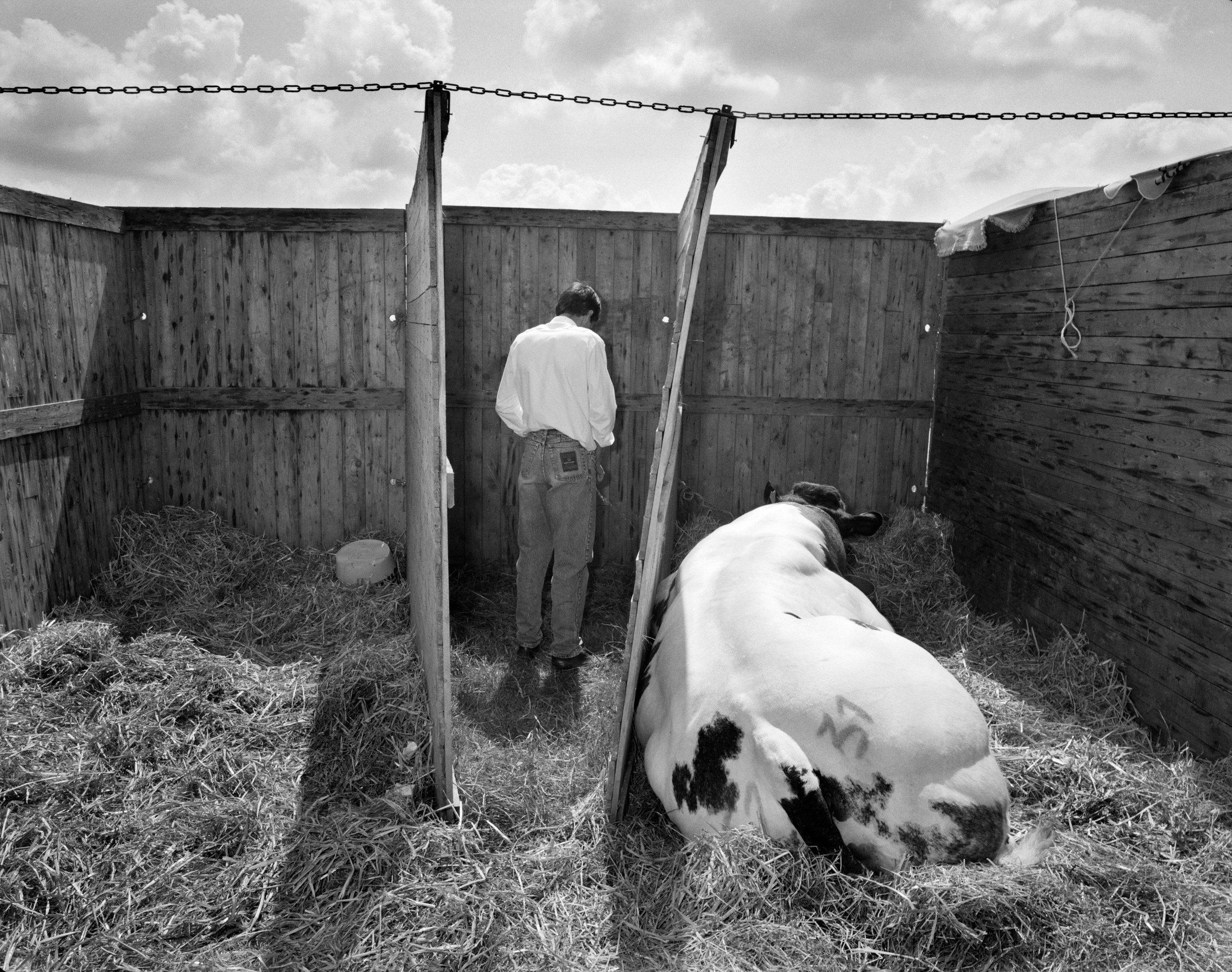 Rural Belgium 1992