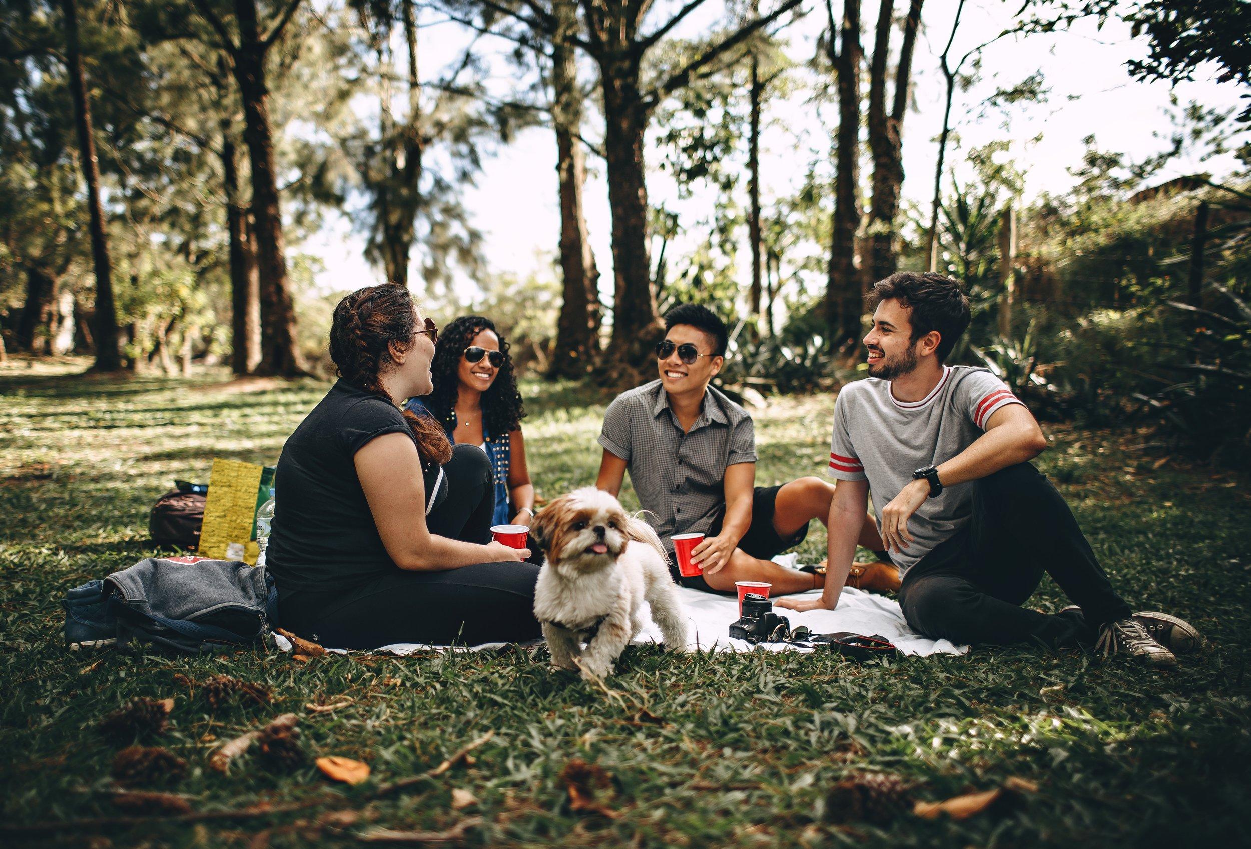 chatting-cups-dog-745045.jpg