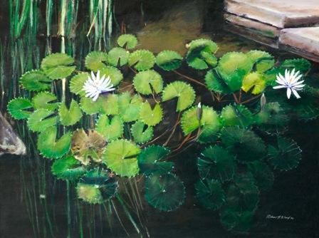 Water Lilies, Bali