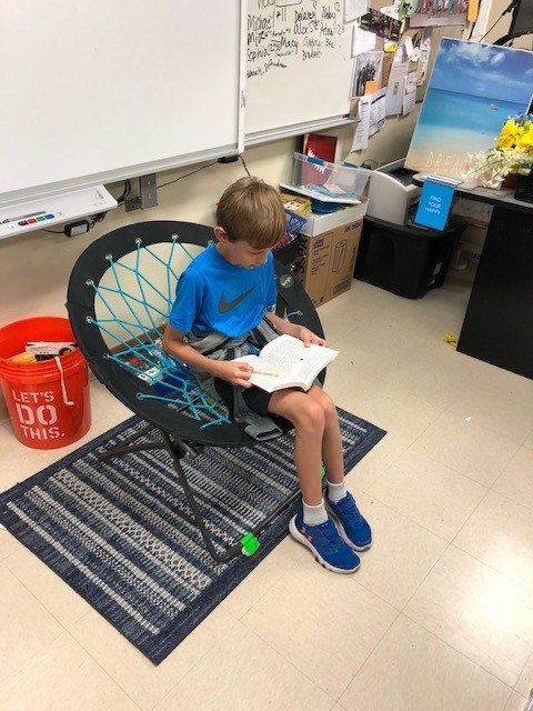 Flexible Seating - Bungee Chair - Mrs. Day.jpg