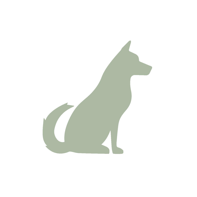 doggo-01.png