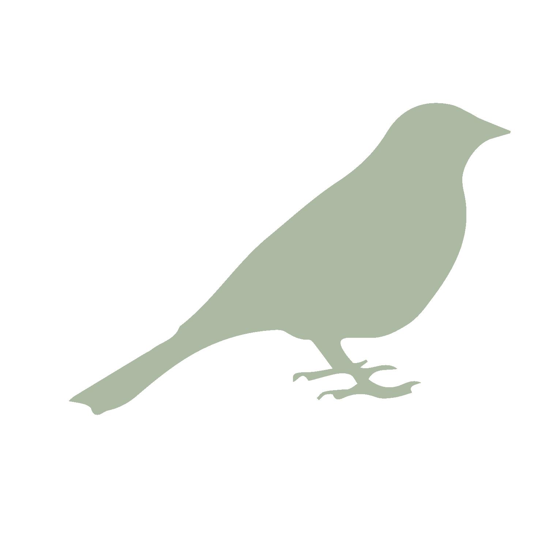 bird-03.png