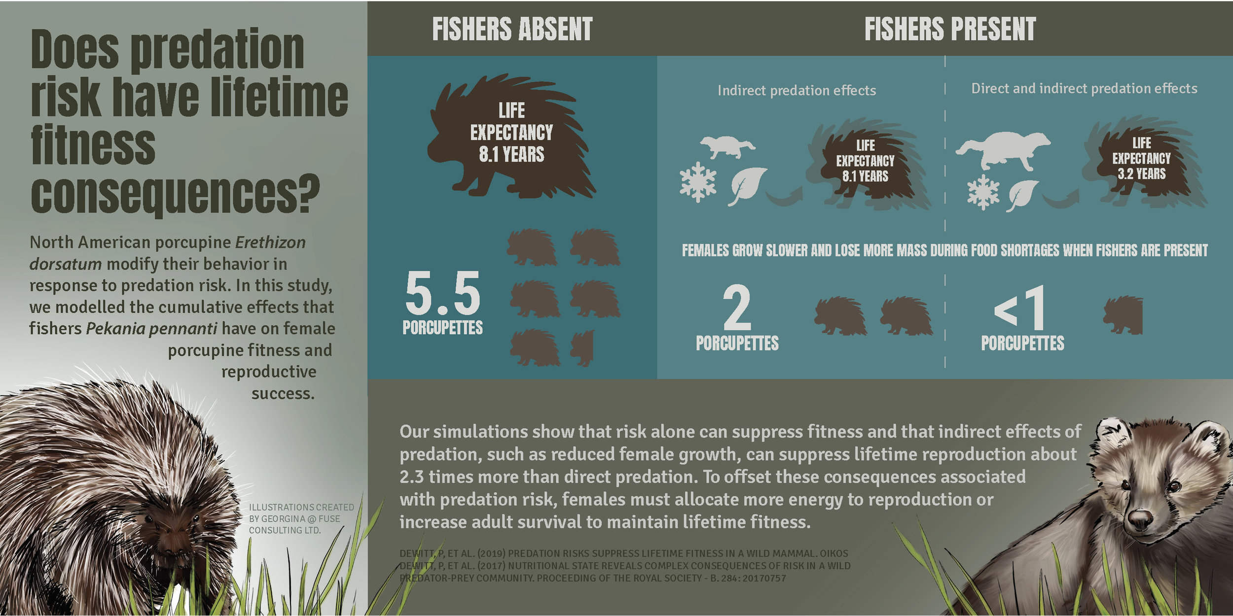 Infographic courtesy of  Fuse Consulting  and Georgina Campos