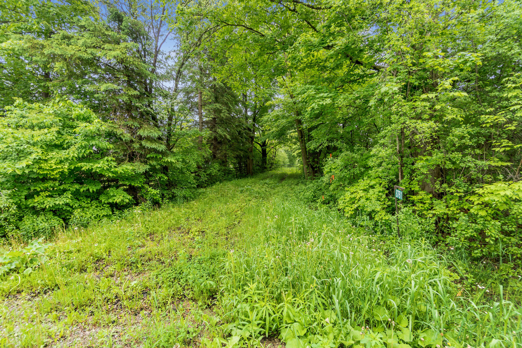8761 Sideroad 17 Erin ON N0B-022-011-Property-MLS_Size.jpg