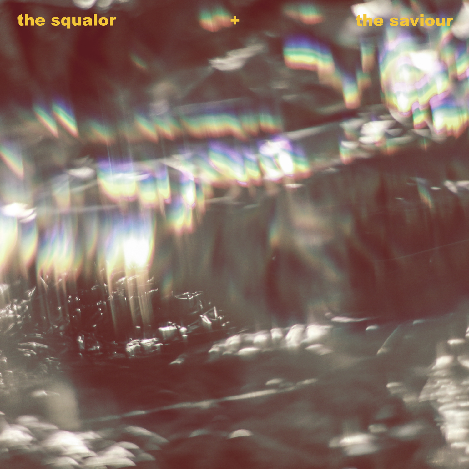 The Squalor and The Saviour cover.jpg