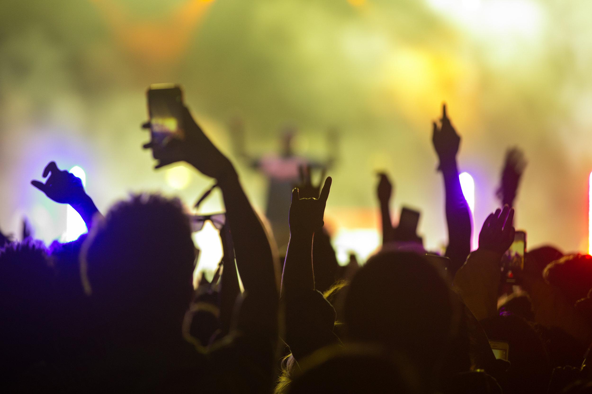 Fest2019-127.jpg