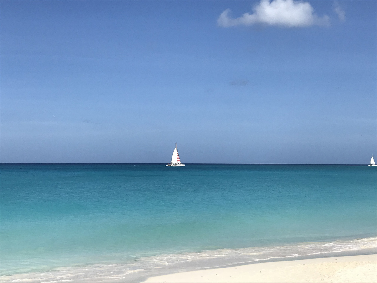 Aruba-The-City-Dweller-28.jpg